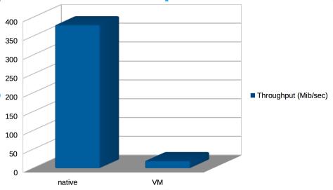 Throughput native vs VM